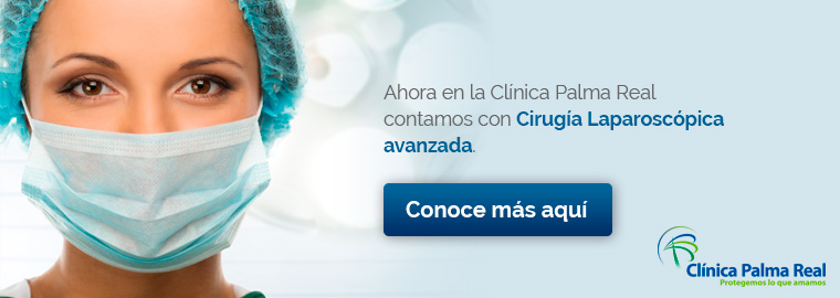 Clinica Palma Real