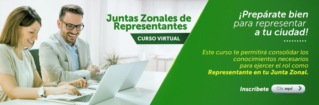 Curso Virtual: Juntas Zonales de Representantes